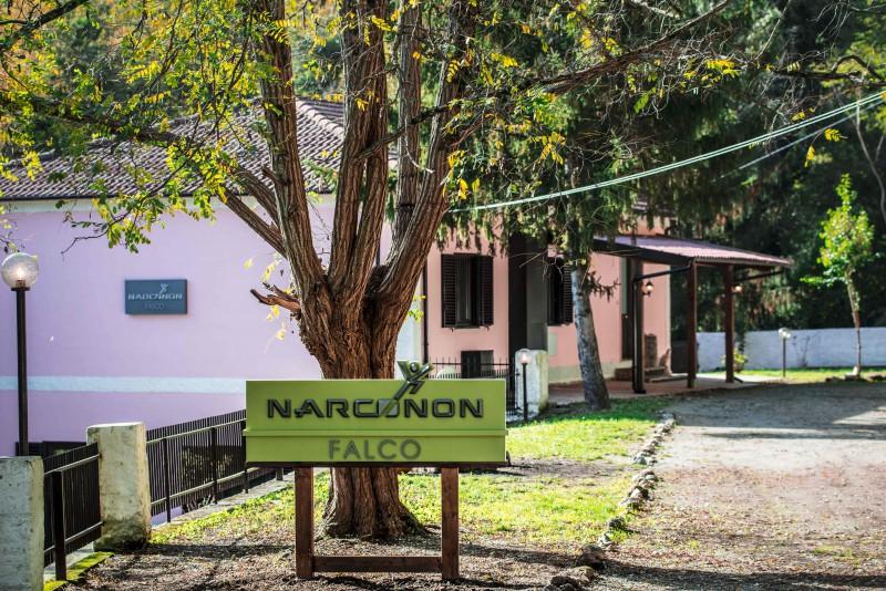 Centro Narconon Falco onlus