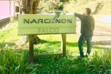 Narconon Falco - storie di successo